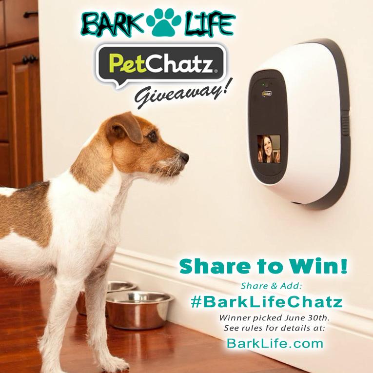Bark Life Pet Chatz Promo